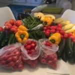 Produce. Mango jam.