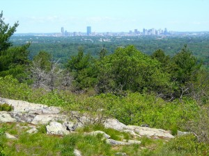 Boston view from Skyline Trail east of Tucker Hill to Buck Hill in Blue Hills June 2011