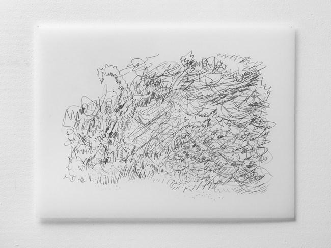 "Untitled #24, graphite on vellum, 19 x 24"", 2009"