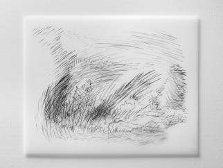 """11.17.13.1, graphite on vellum, 19 x 24"""", 2013"""