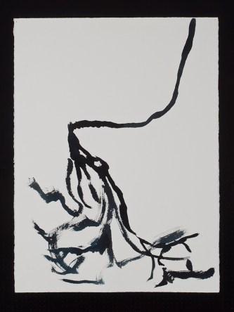 """Cereus, 11.11.13.2, watercolor & ink on paper, 30 x 22.5"""", 2013"""