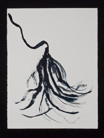 """Cereus, 11.11.13.3, watercolor & ink on paper, 30 x 22.5"""", 2013"""