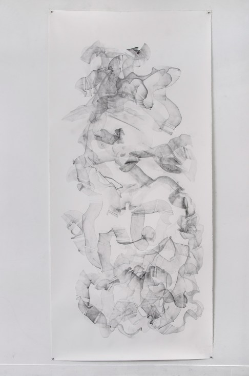 "For Emilie IV, graphite on paper, 108 x 50"", 2014"