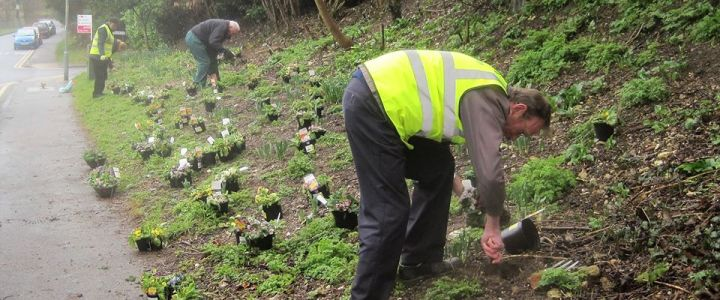 Chesham Environmental Group Work Party – Cameron Road