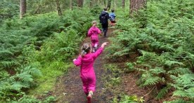 Delamere, cheshire things to do, days out kids cheshire forest, family woodland walk cheshire