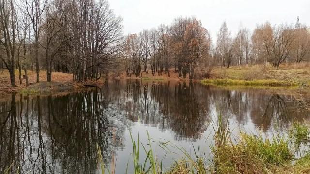 Газовский пруд в Добром