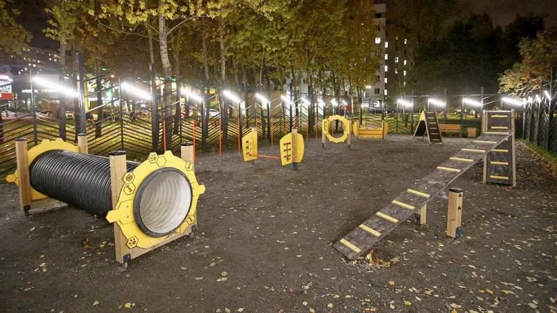 В сквере на улице Труда откроют площадку для выгула собак