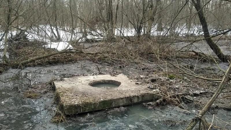 В Белом доме обещали отремонтировать очистные в Суздальском районе