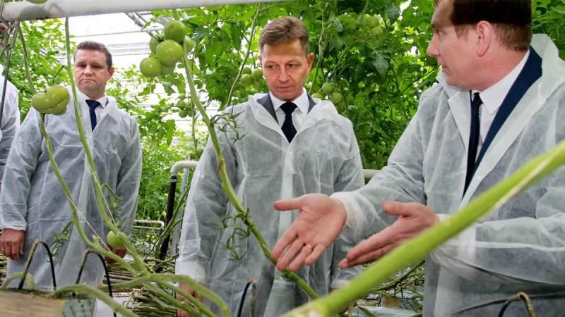 Белый дом предлагает продать «ДСУ-3», «Владимиртеплогаз» и «Тепличный»