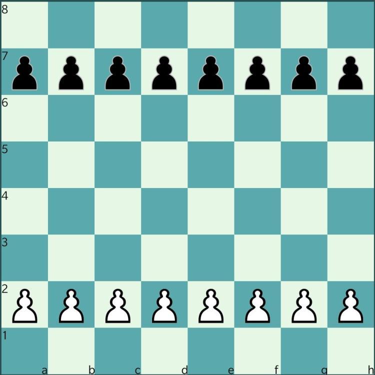 White Pawns