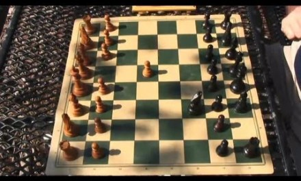 How to Learn to Play Chess & the Beginning Moves : Chess Moves & Strategies