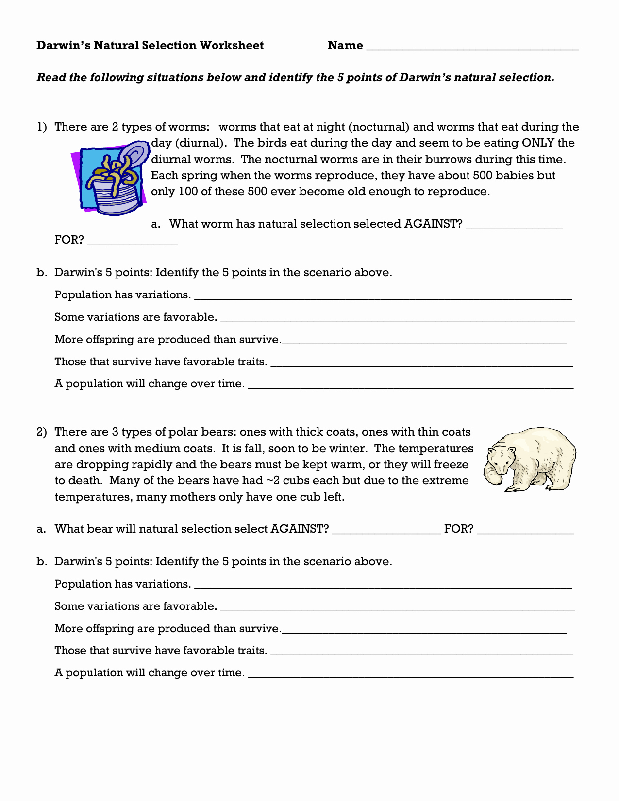 50 Darwin S Natural Selection Worksheet Answers