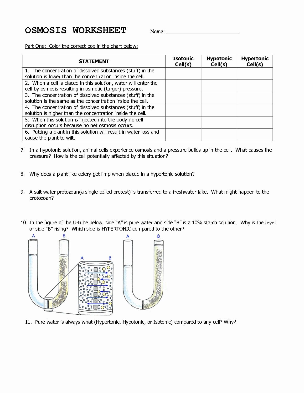 50 Diffusion And Osmosis Worksheet