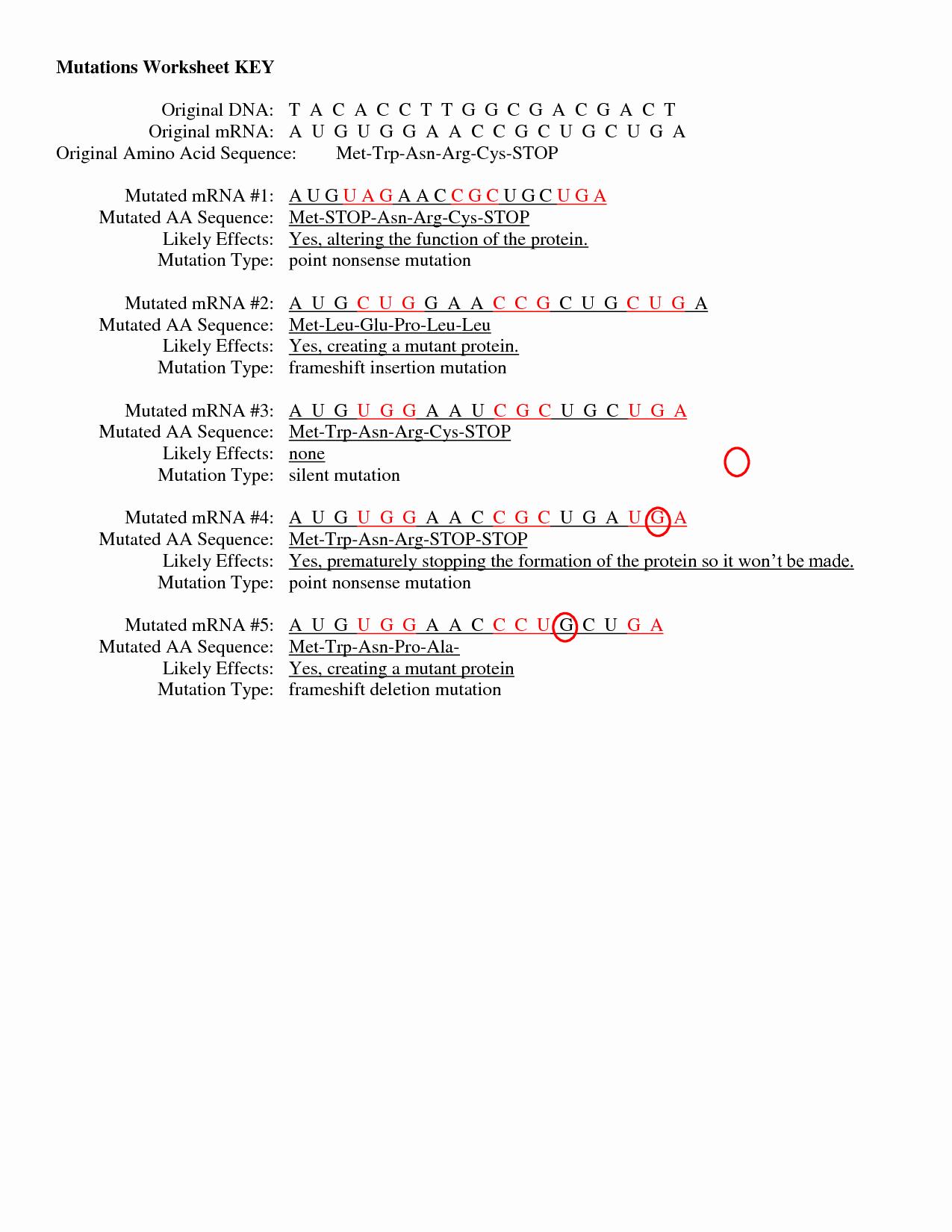 50 Gene And Chromosome Mutation Worksheet