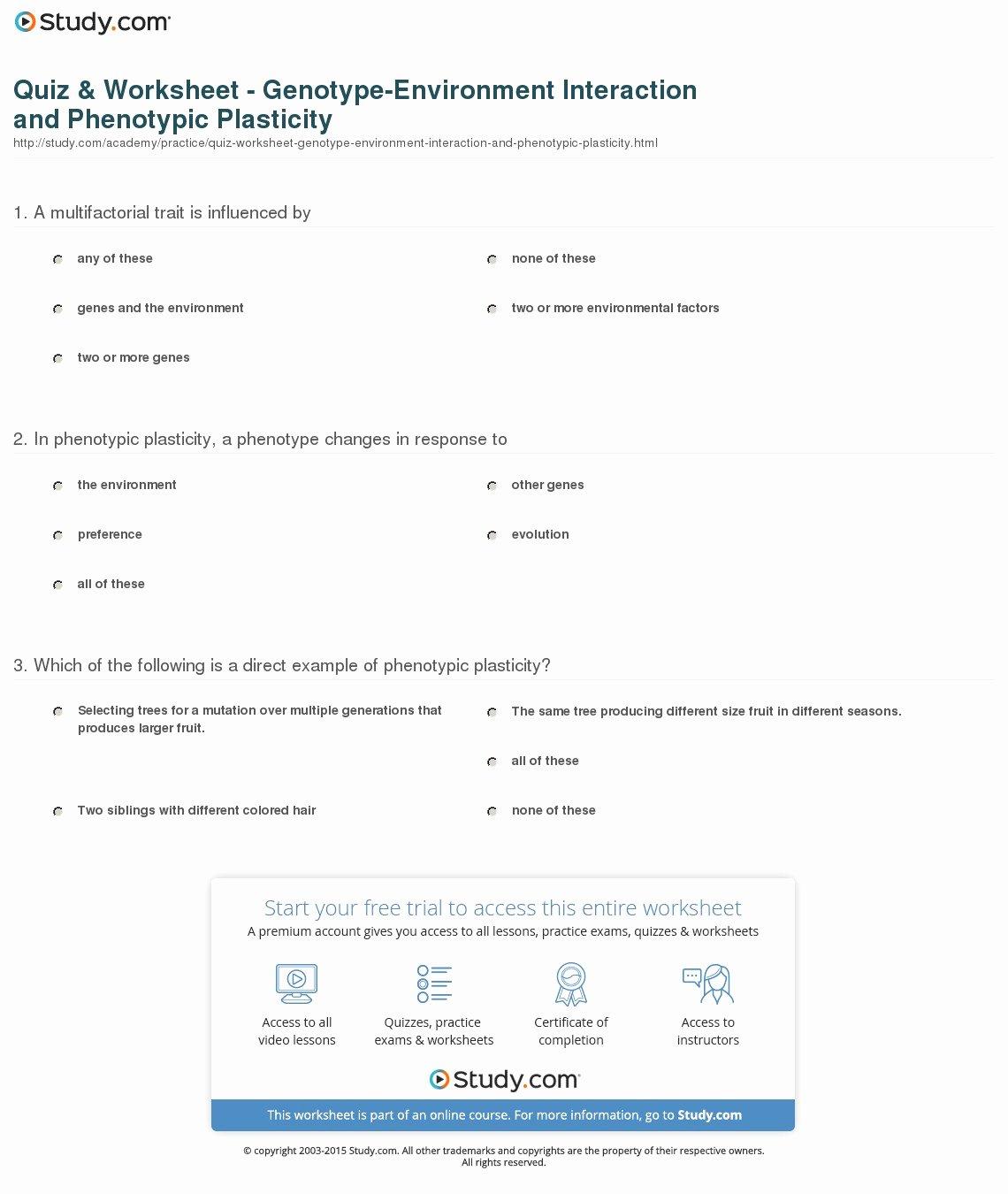 50 Genotypes And Phenotypes Worksheet