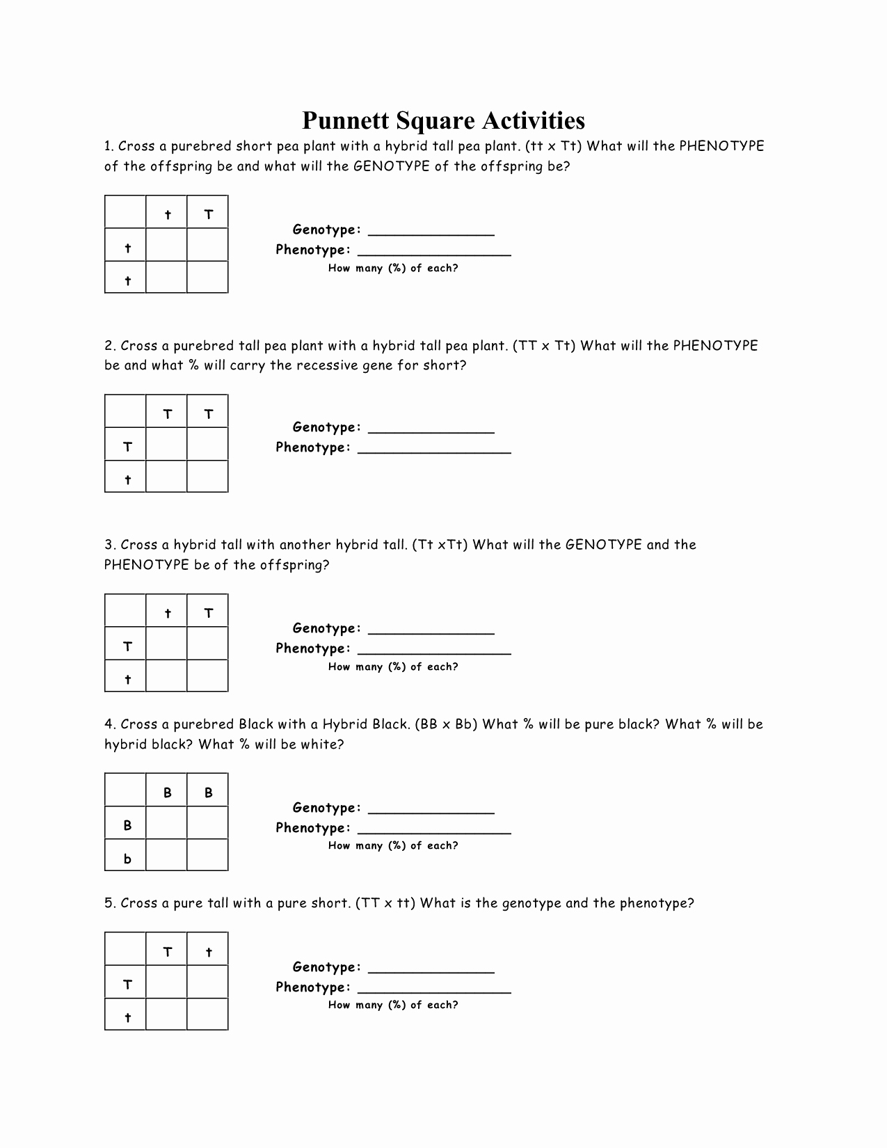 50 Angle Relationships Worksheet Answers