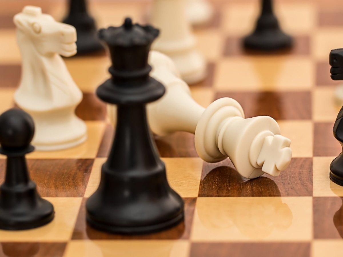 chess statistics