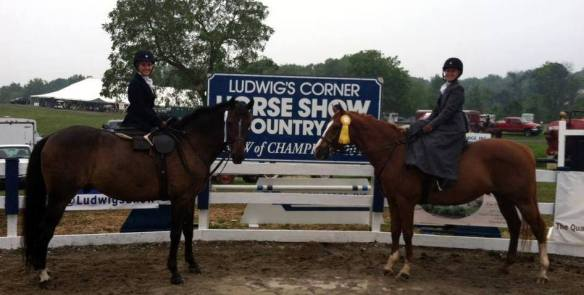Photo courtesy of Ludwig's Corner Horse Show