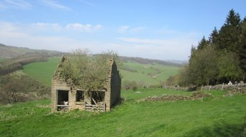 A Pilsley barn