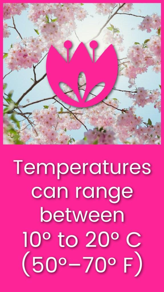 Chester Spring Temperature Guide