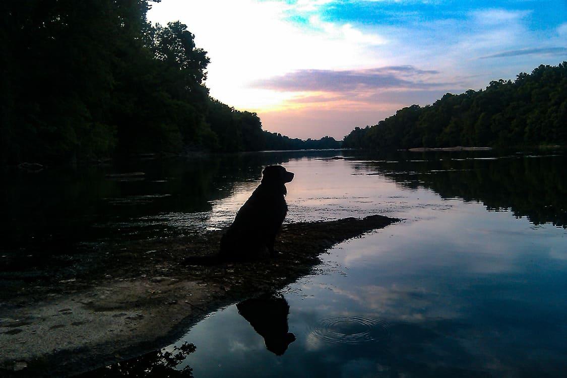 Easy Peaceful Living in Columbia South Carolina