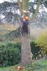 6-Dan climbing