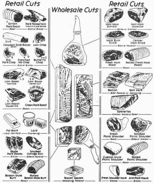 Meat Cuts And How To Cook Them. Lamb Chart