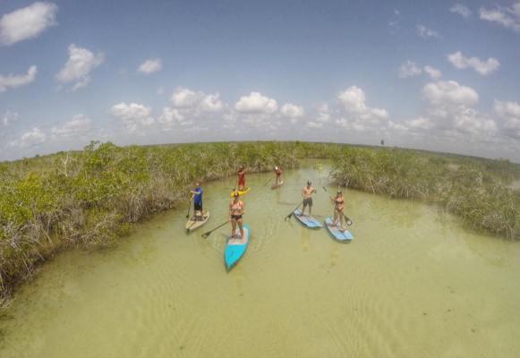 paddle boarding bacalar -buena vista (1)