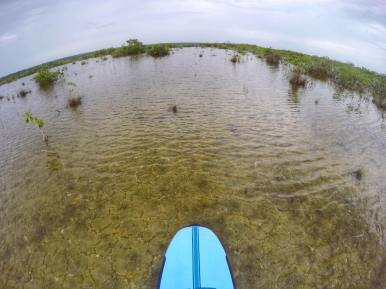 paddle boarding bacalar -buena vista (6)