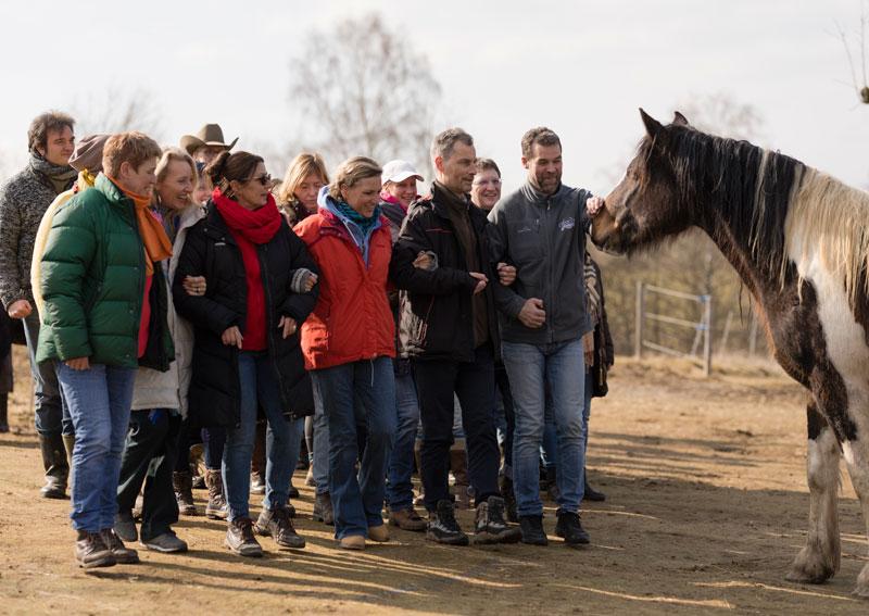 Les chevaux au service d'un leadership avisé et sage dans le futur – c'est ainsi que l'association internationale EAHAE* a réaffirmé sa  mission lors de sa convention annuelle de 2018
