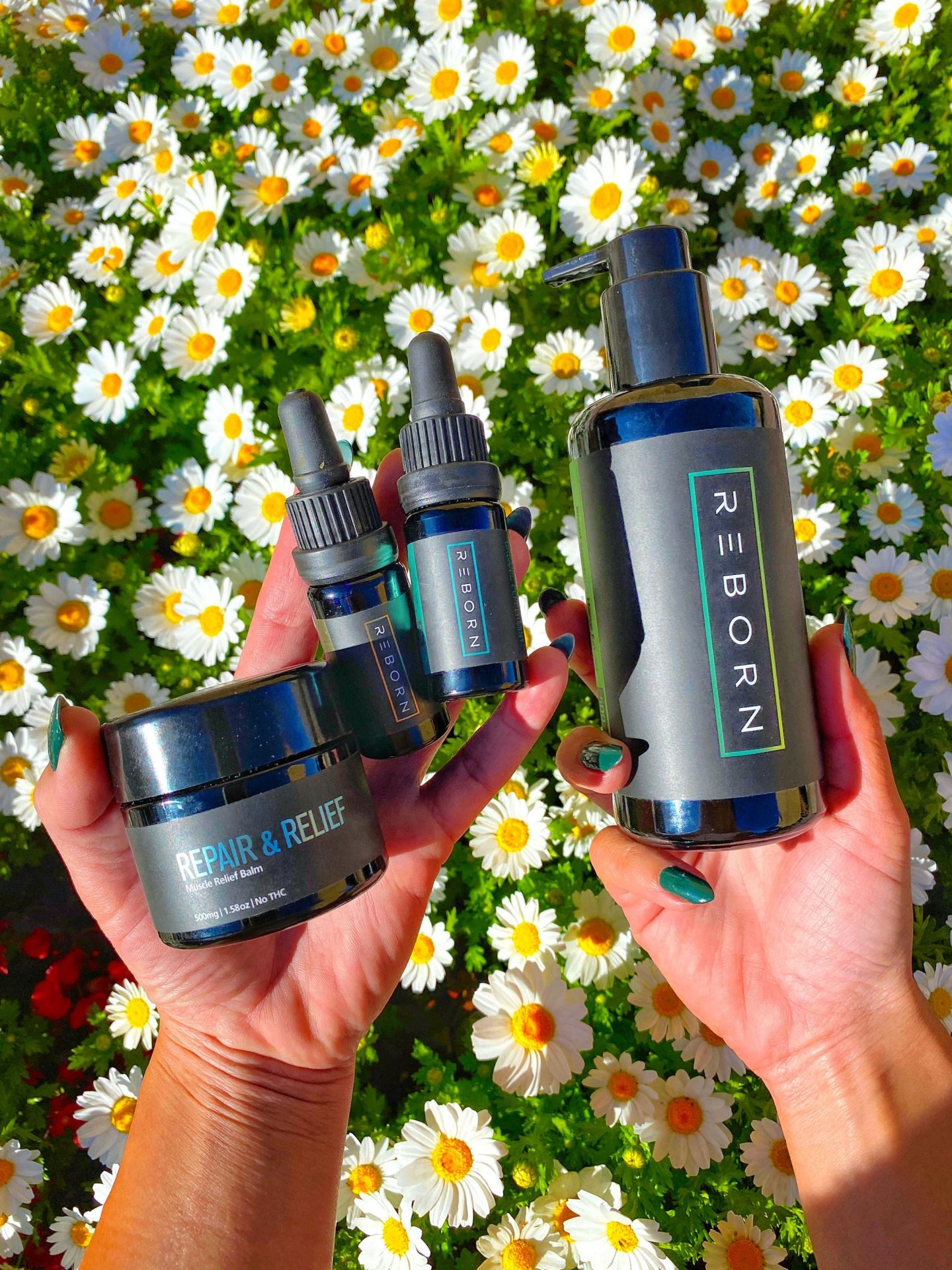 These are my highly recommended REBORN CBD products to add to your wellness routine.