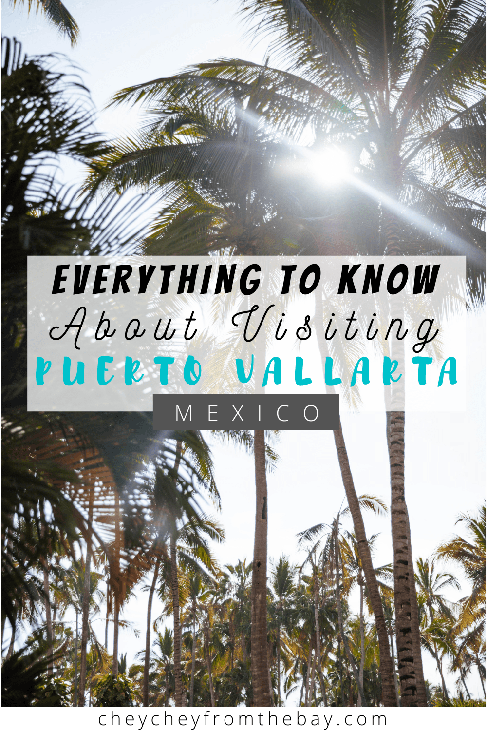 This is the best guide for traveling to Puerto Vallarta, Mexico now!