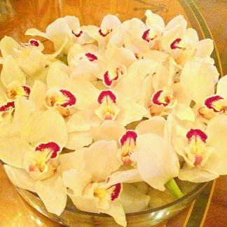 [Fresh flowers <3]