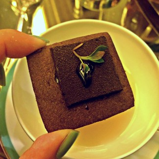 [Mint Chocolate Ganache]