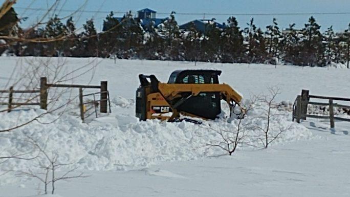 snow removal services in cheyenne www.cheyennehauling.com