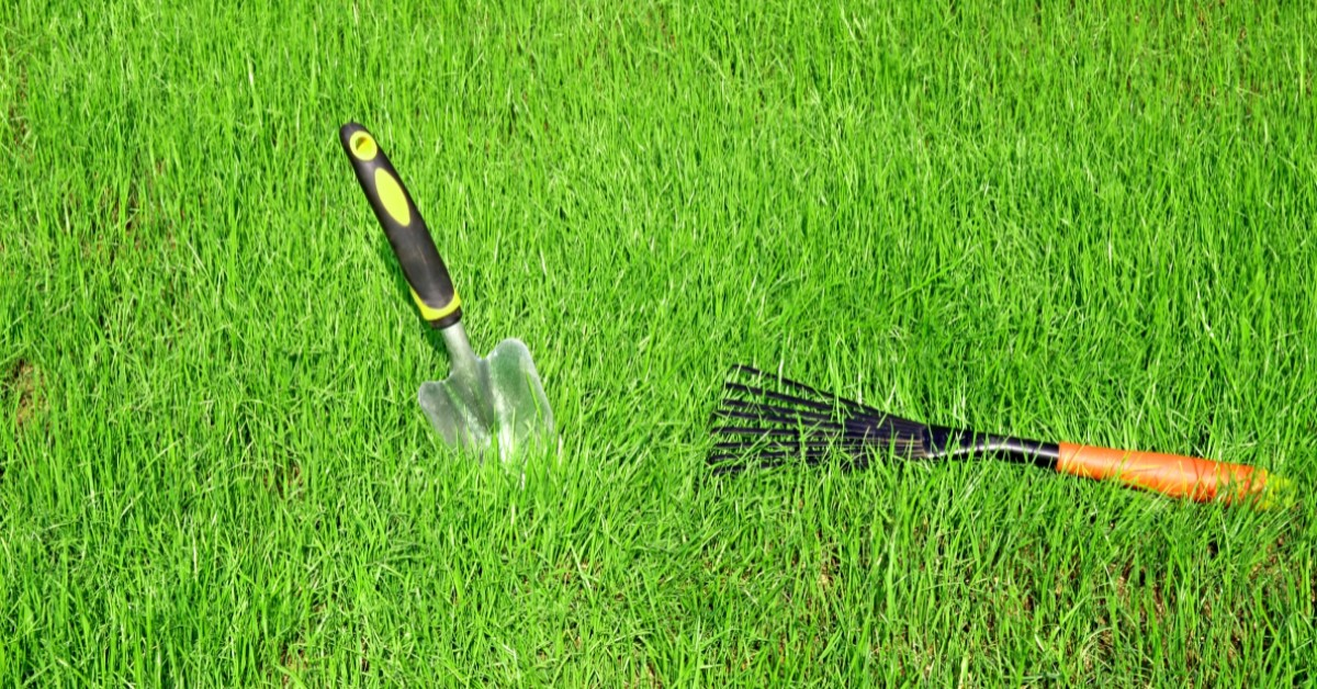 5 must-have spring lawn care tools www.cheyennehauling.com