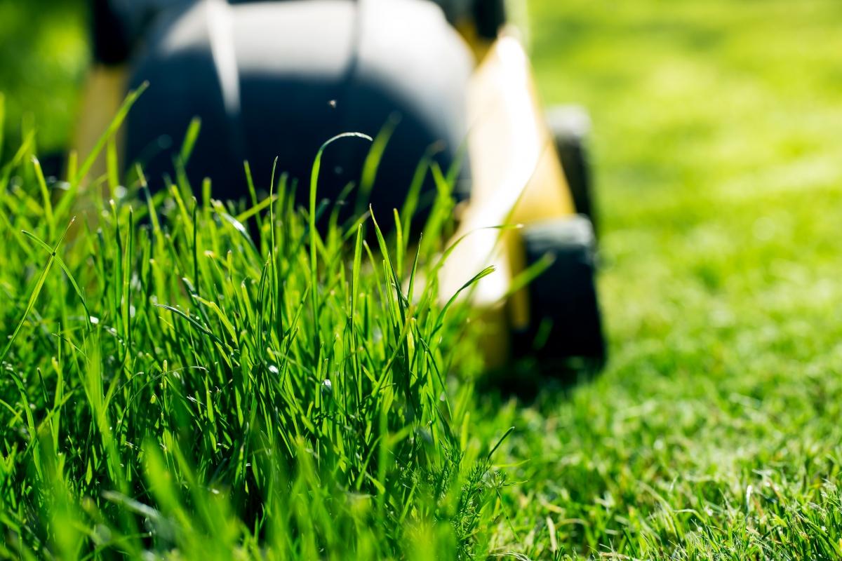 lawn mowing tips www.cheyennehauling.com