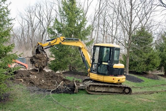 cheyenne tree removal services www.cheyennehauling.com