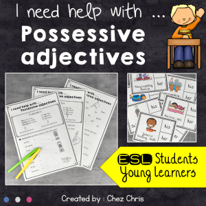 I need help with … Possessive Adjectives