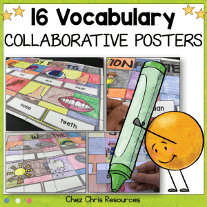 BUNDLE – 16 Vocabulary Collaborative Posters