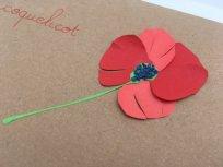 herbier en papier détail