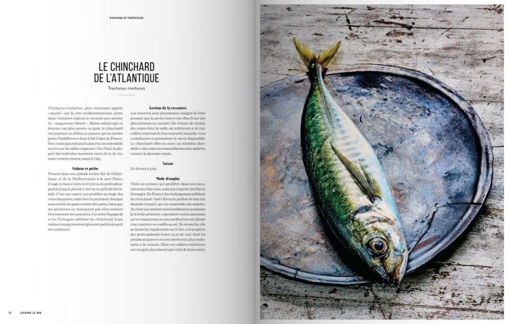 Cuisiner la mer - Gael Orieux