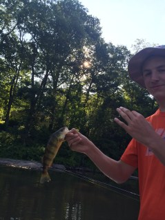 If bass isn't your thing then you can fish for perch.
