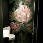 Les Toilettes en France
