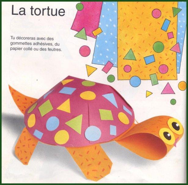 la tortue chez veronalice