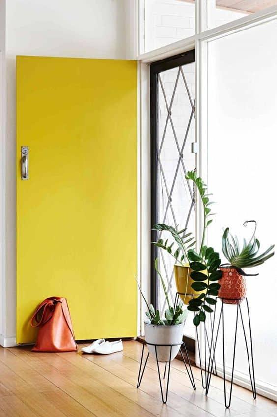 entree porte jaune et plante deco feng shui - Comment réussir une décoration feng shui, très zen ?