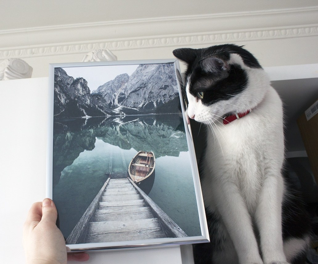 IMG 0170 - Poster Store, la marque de poster d'inspiration scandinave