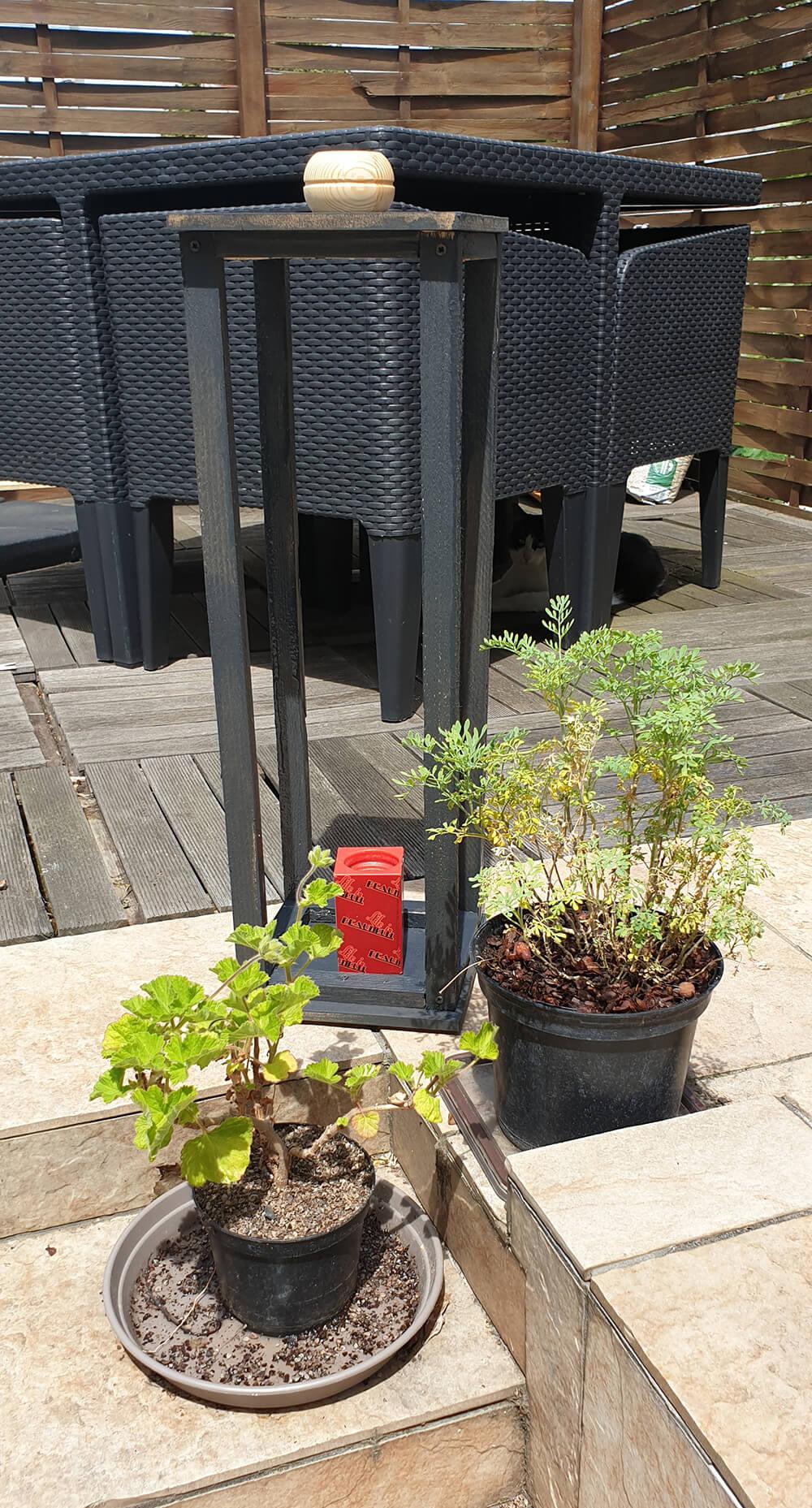 20190623 135908 - Fabriquer une lanterne pour le jardin