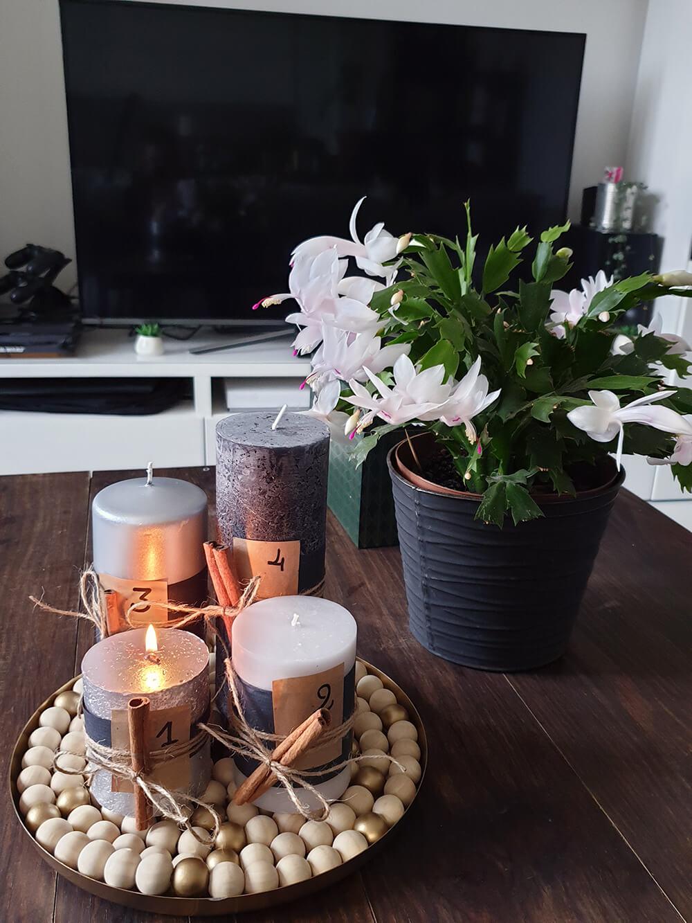 table basse en bois decorer avec une couronne de lavent fabriquée à la main et un cactus de noel - Fabriquer une couronne de l'Avent zéro déchet