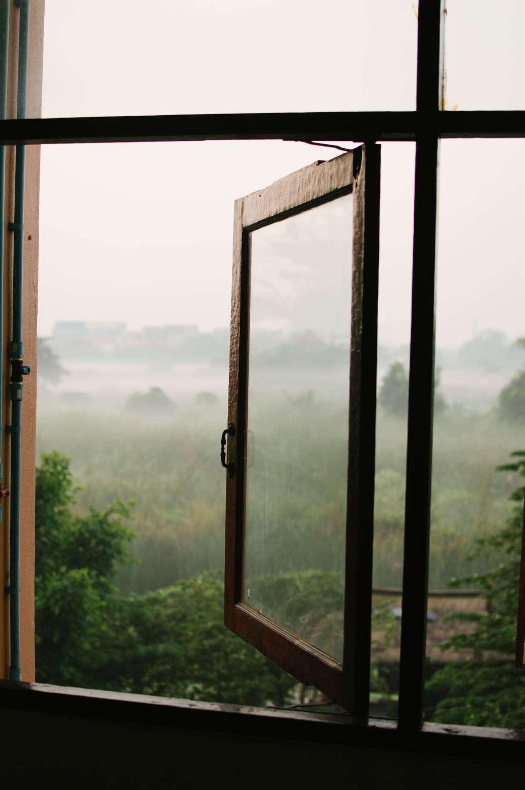 hannah tims 2cZYUA1AwnQ unsplash 2 1362x2048 - Comment appliquer un brise-vue pour fenêtre ?
